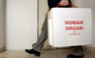 Human-Organ