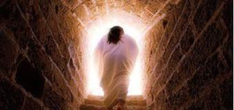 Commento al Vangelo del giorno – 29 Luglio – io credo che tu sei il Cristo