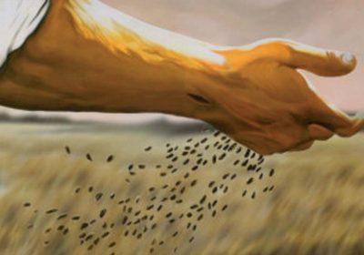 gesu semina