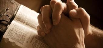 Il Vangelo del giorno – 18 Giugno – Dacci oggi il nostro pane