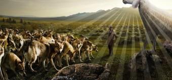 Commento al Vangelo del giorno: 13 Luglio 2018 – Essere pecore fino in fondo