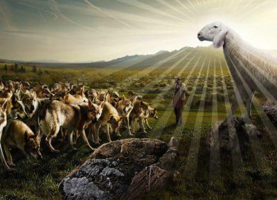 come pecore in mezzo ai lupi