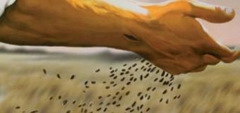 Commento al Vangelo del giorno – 24 Luglio – Signore hai parole di vita eterna