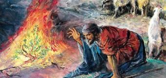 Deuteronomio: Ovvero, solo una voce!