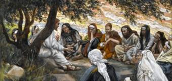 Commento al Vangelo del giorno – 28 Ottobre 2016 – Il giorno divenne missione