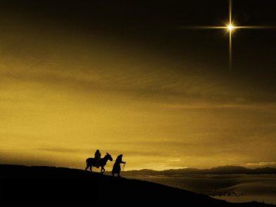 nativity-392x294