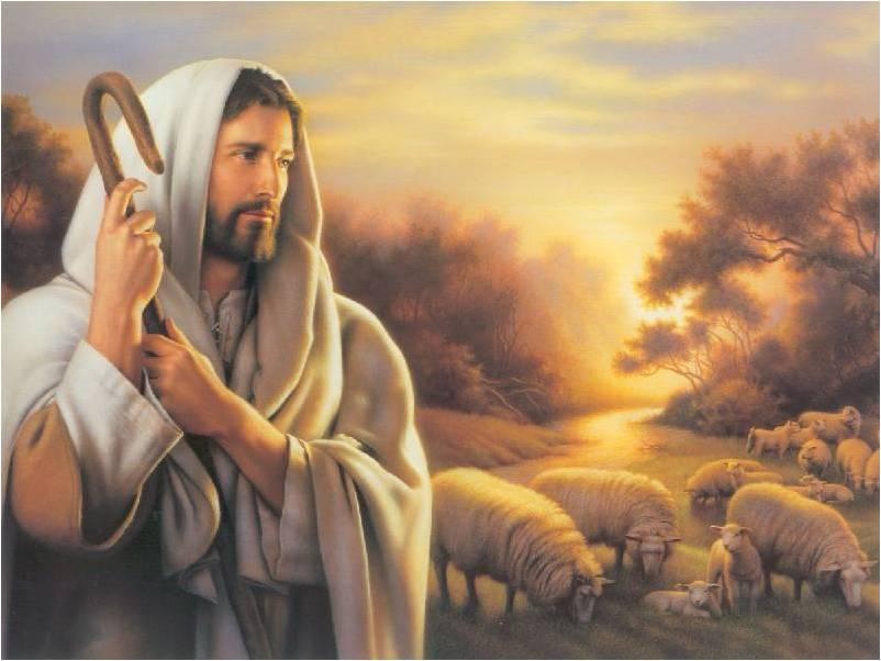 gesu e le sue pecore