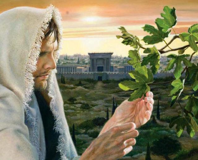 Commento al Vangelo del giorno: 24 Agosto 2019 – Gesù vera scala di Giacobbe.